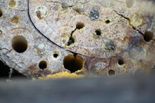 An Insect Hotel Can Be Easily ...