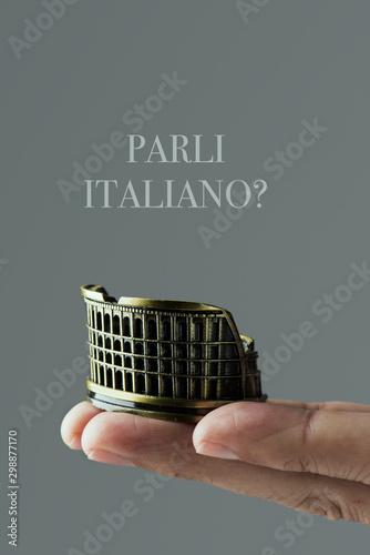 question do you speak Italian, in Italian Tablou Canvas