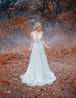 canvas print picture - bride in a white luxurious, modern, long dress with a seductive neckline. Tulle and lace. Elegant collected hairstyle with decoration, silver diadem twig. Autumn forest red leaves of trees, blue fog