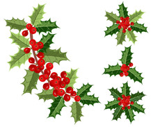 Holly Berries, Vector Illustrations Of Holly Branches With Berries On White Background For Christmas Cards And Decorative Design.