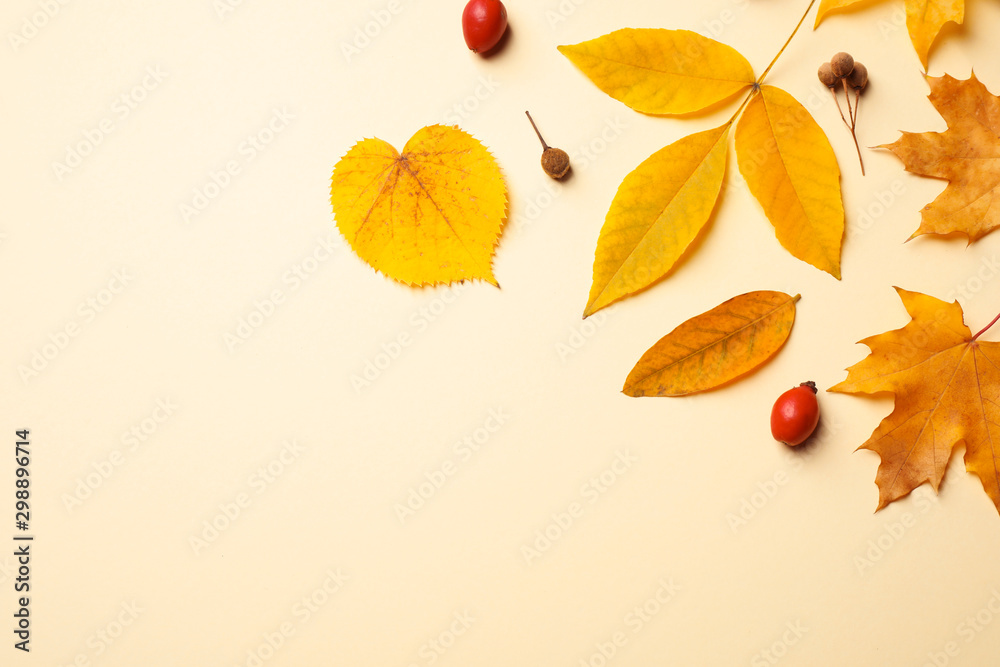 Fototapety, obrazy: Flat lay composition with autumn leaves on beige background. Space for text