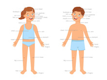 Kids Body Parts Infographic. Vector Human Body Education Infographics With Cartoon Boy And Girl Children And Text Labels Isolated On White Background