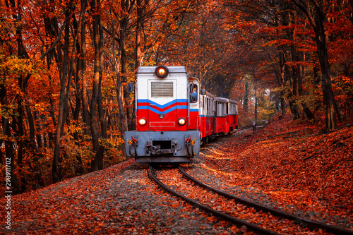 Train coming in the autumn forest in Budapest beautiful colors and fallen leaves in the background. Retro style image