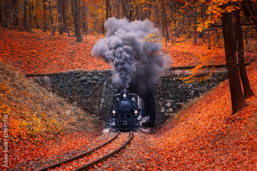 Steam-engine train coming in the autumn forest with beautiful colors and fallen leaves