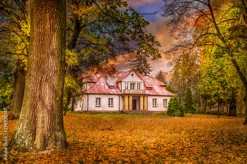 Poland golden autumn in the forest, landscape with colors illuminated by the setting sun.