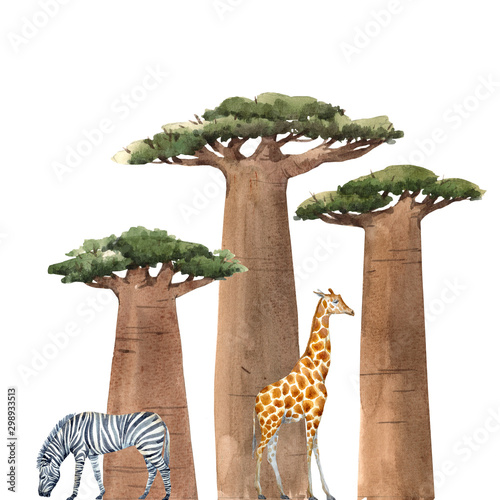Photo Watercolor baobab adansonia african tree illustrationswith zebra and giraffe