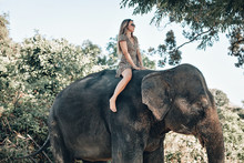 Glamourous Girl In Sunglasses And Stylish Dress With Leopard Print. The Woman Fearlessly Rides An Elephant; Fashion Concept.
