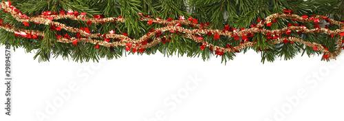 Branches de sapin de Noël Nordmann