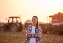 Farmer Woman With Crossed Arms At Corn Harvest