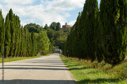 Road leading to Church and Chapel of Montesiepi, Tuscany, Italy Wallpaper Mural