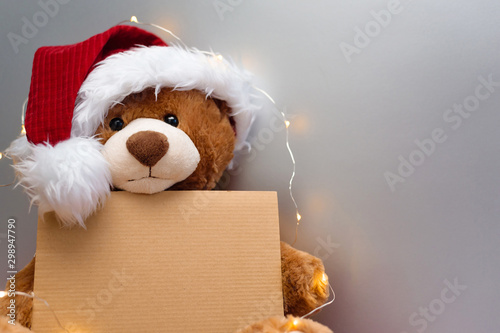 Fotografie, Obraz  Christmas card with Teddy bear holding a place for text and other Christmas decor light garland