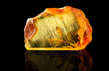 Amazing Piece Of Baltic Amber ...