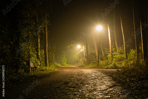 Montage in der Fensternische Straße im Wald Foggy Walkway in Forest, foggy Forest at night, lanterns in a foggy Forest