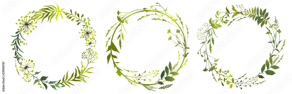 Fototapety, obrazy: Set of circle floral frame meadow herbs. Floral green wreaths. Element design. Vector illustration.