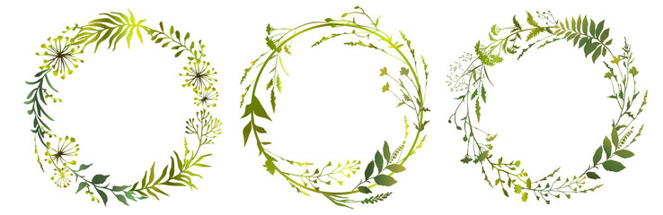 Set of circle floral frame meadow herbs. Floral green wreaths. Element design. Vector illustration.