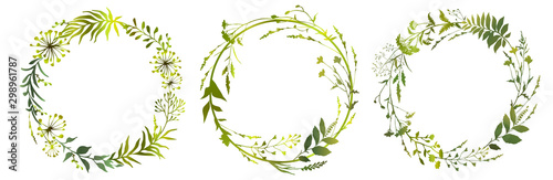 Fototapeta Set of circle floral frame meadow herbs. Floral green wreaths. Element design. Vector illustration. obraz