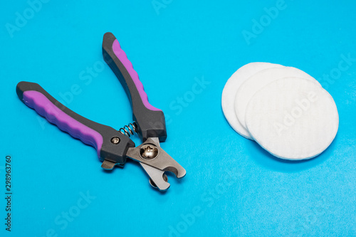 Pet Claw Scissors and cotton pads on blue background Wallpaper Mural