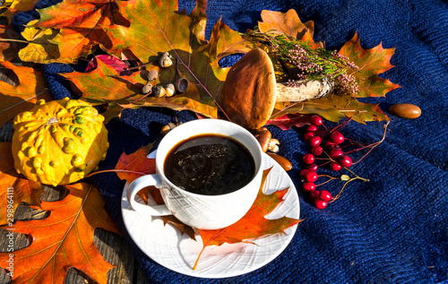 Photo Autumnal maple and oak leaves, decorative pumpkin, wild mushroom and cup of blac