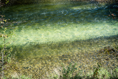 Canvas Prints Forest river Upper Bavaria, Isarauen national Park - Isar river clear blue and green waters running in protected environment, nature backgronund