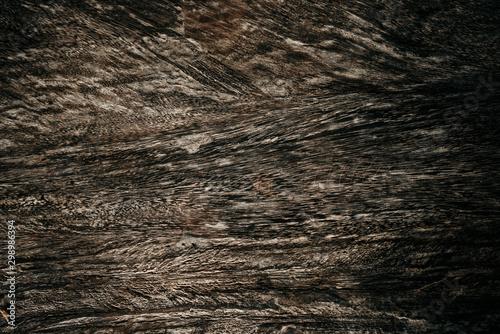 Fotografía  Dark Brown grey wood texture natural tree background