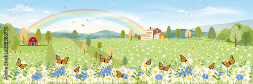 Fotografie, Obraz  Cartoon panorama landscape of Spring field and wild flowers with butterfly flyin