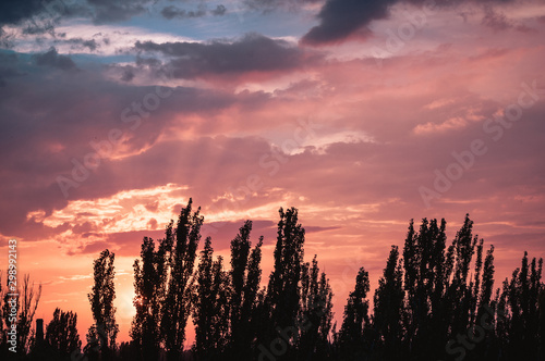 Foto auf Gartenposter Koralle Landscape with dramatic light - beautiful golden sunset with saturated sky and clouds.