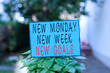 canvas print picture - Text sign showing New Monday New Week New Goals. Business photo text showcasing next week resolutions To do list Plain empty paper attached to a stick and placed in the green leafy plants