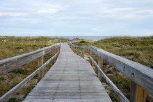 Wooden Path To Tybee Island Be...