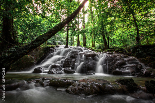 Wall Murals Forest river The natural background of the water flowing through rocks, natural waterfalls, blur of flowing water surrounded by various plants, the integrity of the ecosystem.