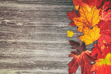 Autumn Leaves Background Top V...