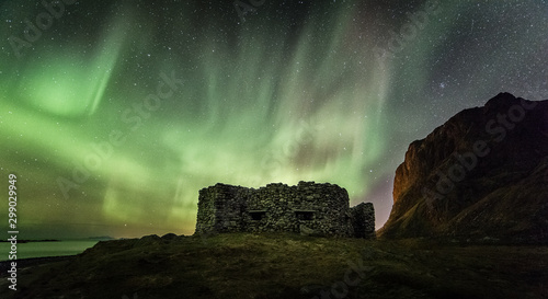 Fotobehang Khaki Lofoten Islands Aurora Borealis Norway northern Lights arctic circle