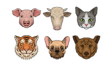 Set Of Realistic Farm And Wild Animals Heads. Vector Illustration.