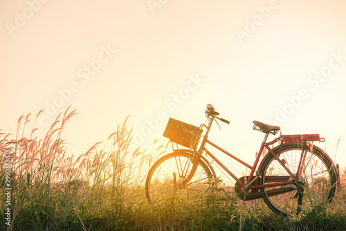 Poster Bicycle Retro bicycle in fall season grass field, warm meadow tone