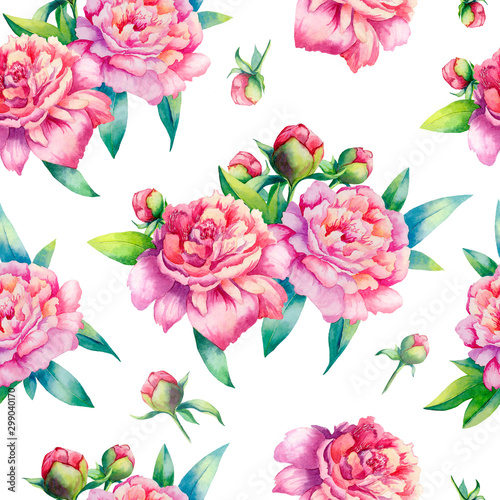 akwarela-rozowa-piwonia-wzor-na-bialym-tle