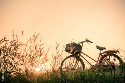 Foto auf Leinwand Fahrrad Retro bicycle in fall season grass field, warm meadow tone