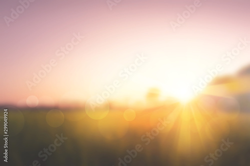Poster Printemps Sweet meadows at sunset blurry background