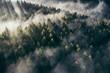 canvas print picture - Der Teutoburger Wald im Nebel