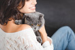 close up of woman with grey scottish fold cat