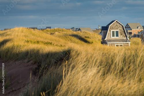 Obraz na plátne Little cottages nestled among the sand dunes at the beach.