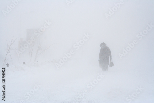 Fototapeta Low visibility during a blizzard. Strong snowstorm in the city. A pedestrian walks along the snowy sidewalk. Strong wind and cold weather. Severe northern climate. Anadyr, Chukotka, Siberia, Russia. obraz