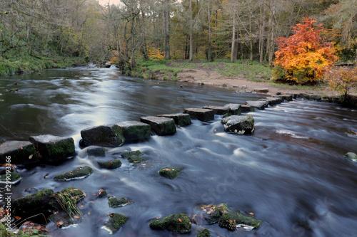 Obraz na plátně stepping stones across river in autumn