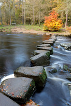 Stepping Stones Across River I...