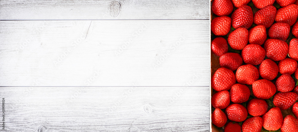 Fototapety, obrazy: Fresh juicy strawberries wide banner or panorama concept. Red strawberry on white wooden board.