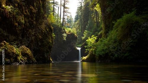 Autocollant pour porte Rivière de la forêt lake in the forest