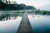 Fog, grass, trees against the backdrop of lakes and nature. Fishing background. Carp fishing. Misty morning. nature. Wild areas. bridge over the river.
