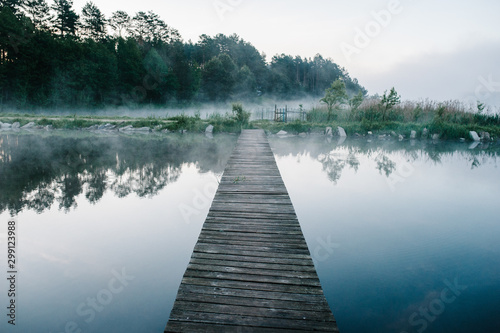 Canvas Prints Bridges Fog, grass, trees against the backdrop of lakes and nature. Fishing background. Carp fishing. Misty morning. nature. Wild areas. bridge over the river.