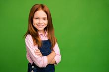 Photo Of Little Ginger Schoolchild In Front Of Blackboard Hands Crossed Listening Teacher Learning Favorite Subject Wear Denim Overall Pink Shirt Isolated Green Background