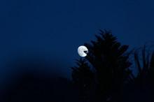 Three Quarter Moon Rising  Ove...