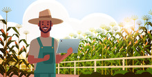 Man Farmer With Tablet Monitoring Corn Field Condition Countryman Controlling Agricultural Products Organization Of Harvesting Smart Farming Concept Landscape Background Flat Horizontal Portrait