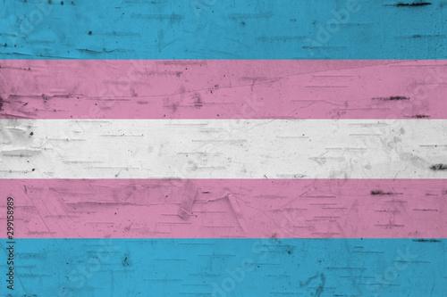 Fotografía A rustic old transgender flag on weathered wood